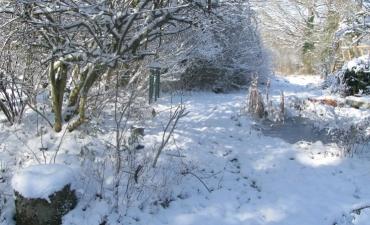 jardin de lune en neige