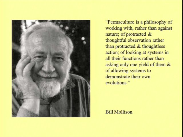 Permaculture by Bill Mollison